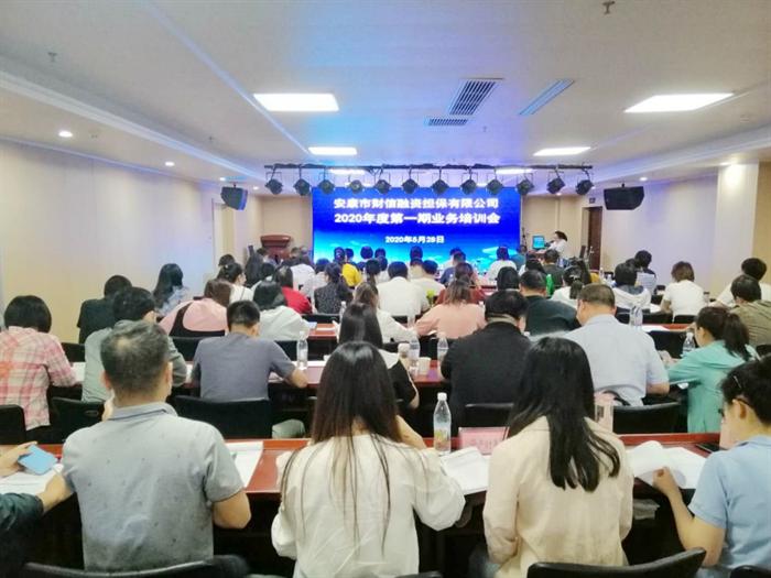 财信担保公司举办2020年第一期业务培训会