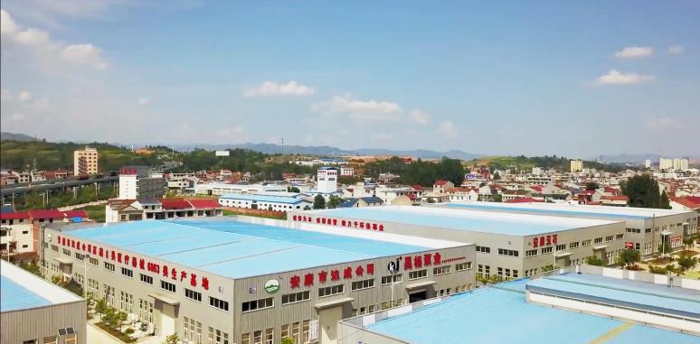 安康市汉滨区五里产业园区投资开发建设有限公司