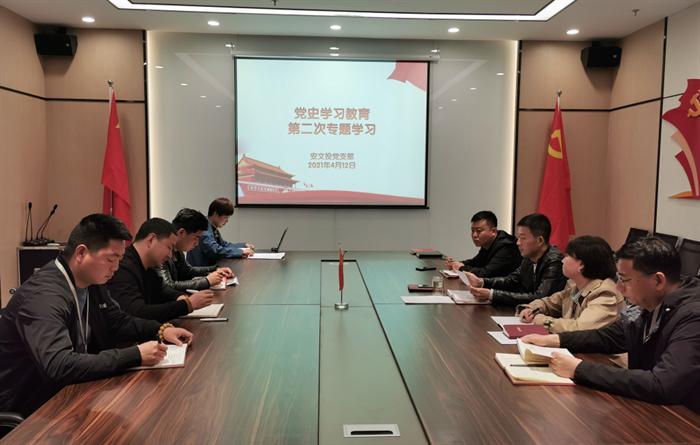 安文投公司党支部开展第二次党史教育专题学习